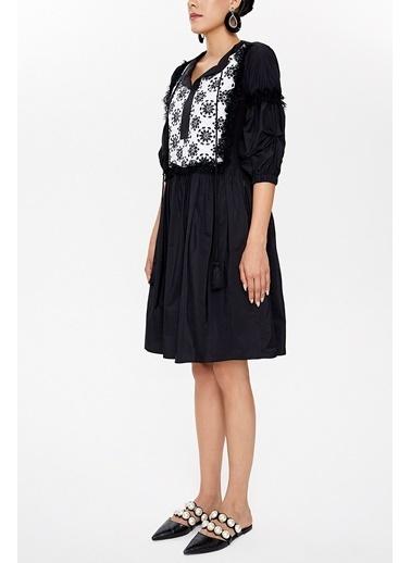 Societa Büzgülü dantelli  mini  elbise 92459 Siyah